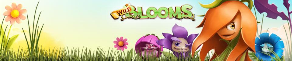 wild-blooms-banner